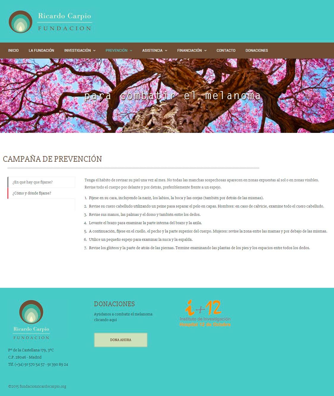 Desarrollo web, Fundación Ricardo Carpio | Madrid 2